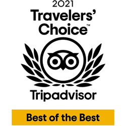 Dorset Heavy Horse Farm Park - TripAdvisor Hall of Fame 2018